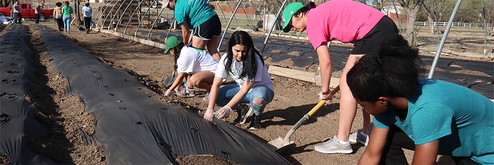 students volunteering in garden