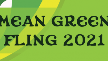 """Green graphic with an icon of McConnel tower and text that says """"Mean Green Fling 2021""""."""