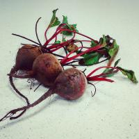 beets for food pantry