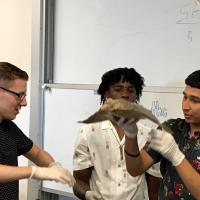 Ryan Talent Search students learning about marine life on A&M Galveston College tour