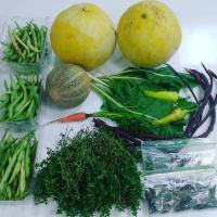 large produce donation