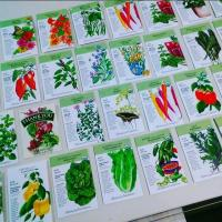 new seed packets