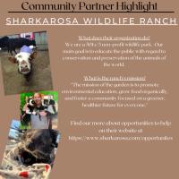 Community Partner Highlight: Sharkarosa Wildlife