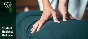 Massage Therapy Services