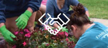 Students planting plants in a garden