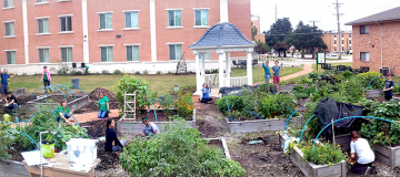 people working in the UNT garden